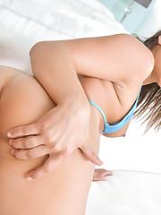 Pornstar Abella Danger Devotee Pictures..