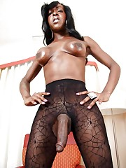 Black tgirls collection - Foto 120 -..