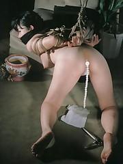 Japanese sadomasochism  Free Hardcore Jpg