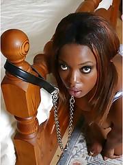 Servant Ebony Slave Sluts - 3-38 画..