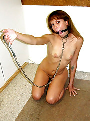 Your cuckold whore wifes need training..